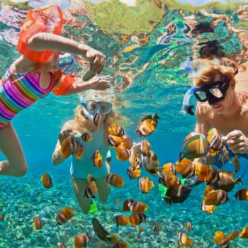 Family snorkeling on vacation